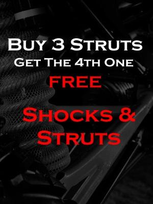 Struts/Shocks